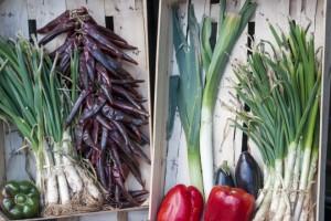 Cucinare con gli scarti di frutta e verdura: cucina degli avanzi