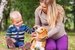 voucher-babysitter-come-quando-usarlo-legge-normativa