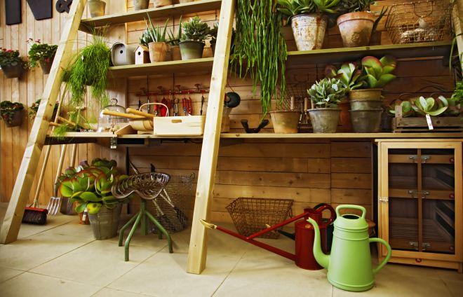 orto-terrazzo-piante-autunno-inverno-precauzioni